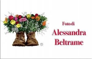Alessandra Beltrame