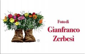 ZerbesiGianfranco.jpg