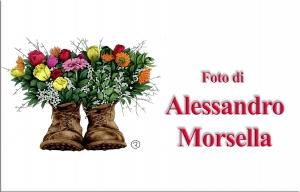 MorsellaAlessandro.jpg