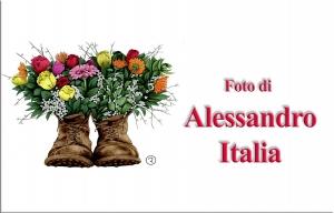 ItaliaAlessandro.jpg