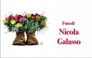 Nicola Galasso