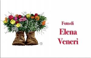Elena Veneri