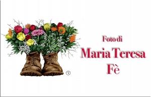 MariaTeresa Fe