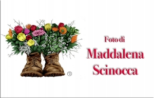 Maddalena Scinocca