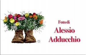 Alessio Adducchio